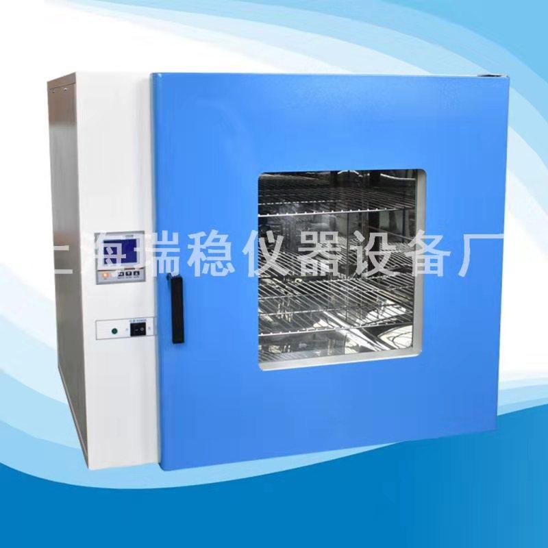 供应电热恒温鼓风干燥箱DHG-9203A
